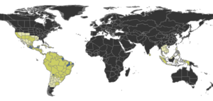 Rogeria Distribution.png